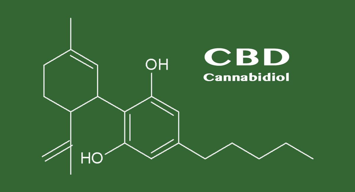 an experiment on the extraction of thc from the marijuana plant The patients or when extracted for preparing cannabis derivative products   cannabis spp plant and its products are controlled drug substances   experiments involving activation or decarboxylation are very limited on the.