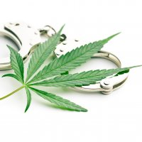 A cannabis leaf laid on top of a pair of metal handcuffs agains a bright white background.