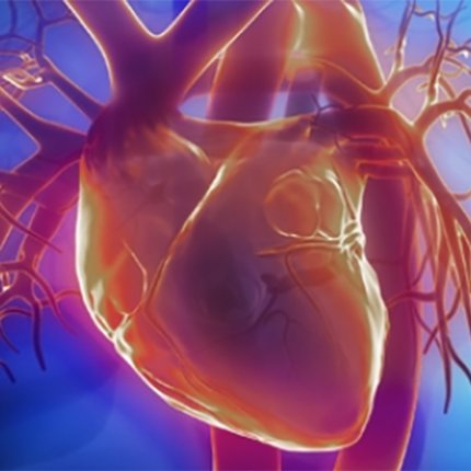 CBD may benefit cardiovascular disease