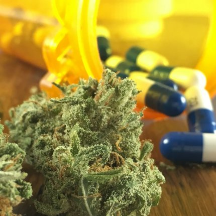 A cannabis bud sits in front of a tipped-over prescription bottle with pills pouring out of it on a wooden table.