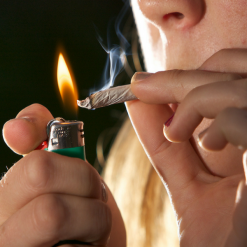 Marijuana doesn't cause lung cancer
