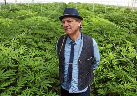 Growing Pains: Can Sustainable Farmers Survive Legalization