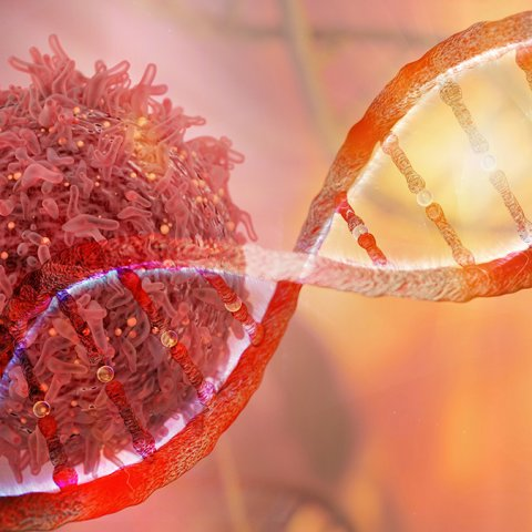 Cancer cell and DNA