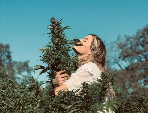 Chelsea Leyland, an adult epileptic wearing a white flowing dress and hugging a cannabis plant taller than she it.