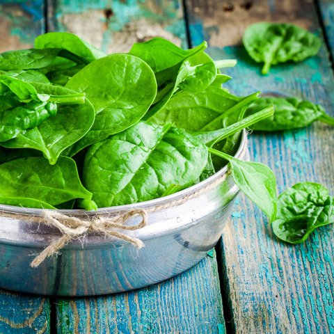 Tin of spinach on a wood table