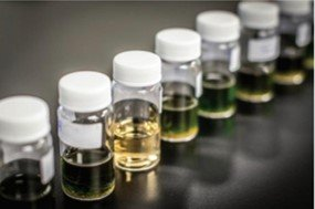 Cannabis samples being prepared at Sonoma Lab Works for analysis