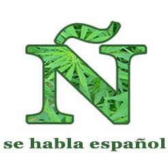 Project CBD in Spanish