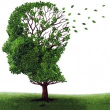 Marijuana for Alzheimer's prevention