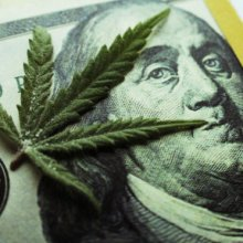 marijuana leaf on $100 bill