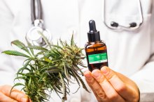 A doctor in a lab coat holds a cola of cannabis flower and a tincture bottole in their hands.