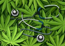 An illustration of a blue stethescope on a background of bright green cannabis leaves.