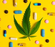 A cannabis leaf sits in the middle of a grid of pharmaceutical pills on a bright yellow background.