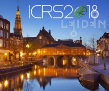 ICRS Flyer