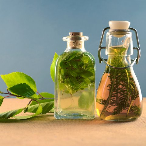 A photograph of two glass bottles filled with herbs and oil. There is a stem of a oval leafed herb behind the bottles on a woods surface.