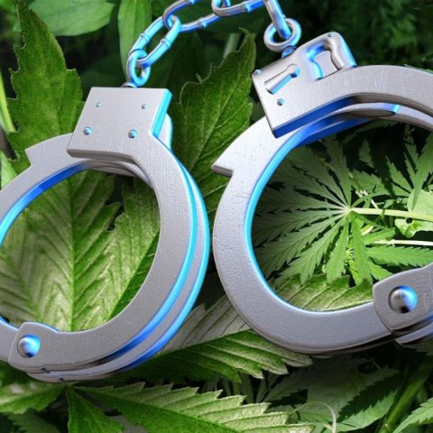 Marijuana leaf and handcuffs