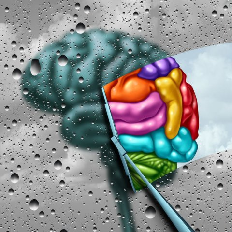 Improved brain function