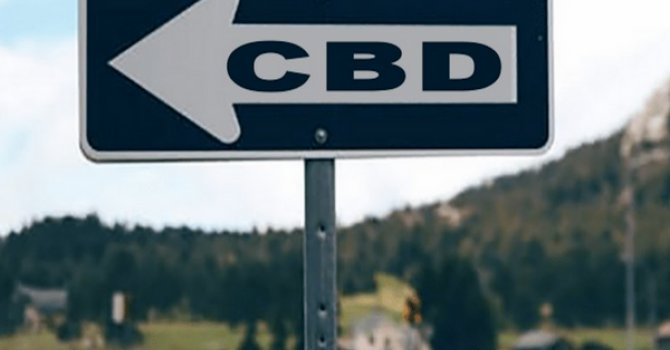 Crackdown on CBD hemp oil companies