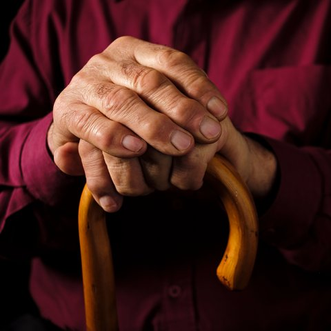Hands of old man with red shirt and cane
