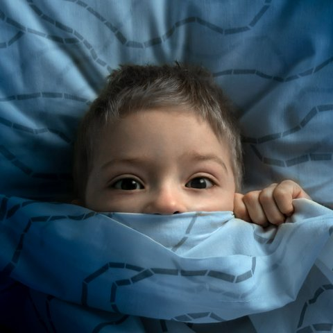 scared kid riding under the covers