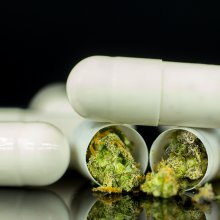 white capsules with cannabis or CBD