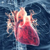 CBD, cannabis, marijuana and heart problems