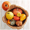 A pumpkin curry recipe packed with medicinal benefits