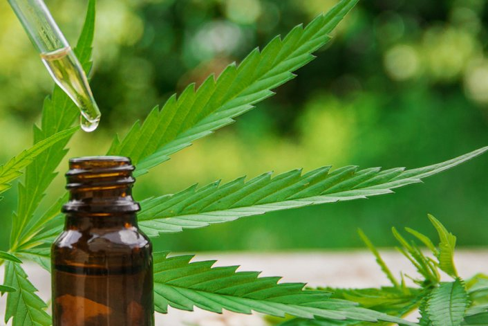A Guide To Using CBD Oil